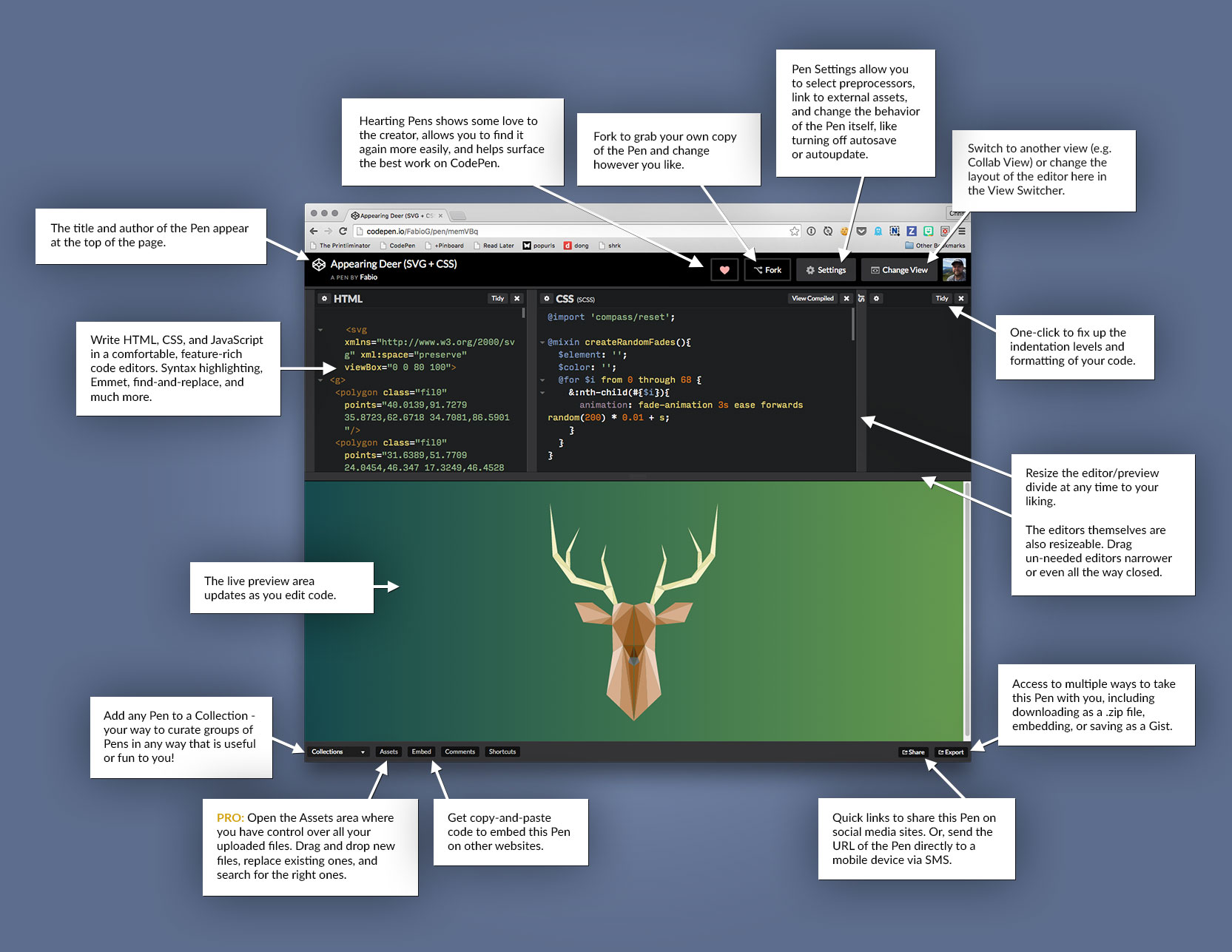 The CodePen Editor has a ton of features.